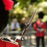 Sich sammeln die Farbzeremonie, London Großbritannien Soldaten, die zur Aufmerksamkeit stehen lizenzfreies stockbild