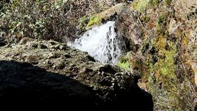 Sich schnell bewegender kleiner Strom-Wasserfall unter Felsen und Anlagen stock footage