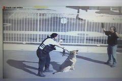 Sicherheitsbeamte-Aiming Gun At-Dieb In Parking Lot Stockfotos