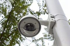 Sicherheitsnocken in einem allgemeinen Park Lizenzfreie Stockfotos