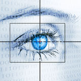 Sicherheitssystem Lizenzfreies Stockbild