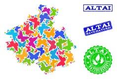 Sicherungsnatur-Collage der Karte von Altai-Republik mit Schmetterlingen und Schmutz-Dichtungen stock abbildung