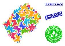 Sicherungsnatur-Collage der Karte von Lesotho mit Schmetterlingen und verkratzten Dichtungen stock abbildung