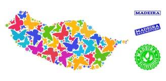 Sicherungsnatur-Collage der Karte von Madeira-Insel mit Schmetterlingen und Bedrängnis-Wasserzeichen vektor abbildung