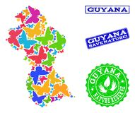 Sicherungsnatur-Zusammensetzung der Karte von Guyana mit Schmetterlingen und verkratzten Wasserzeichen lizenzfreie abbildung
