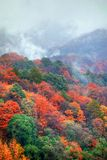 Autumn scenery of Sichuan. Sichuan autumn scenery, there are mountains and water with clouds, fogs and red leaves Royalty Free Stock Image