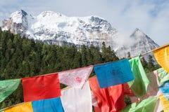 SICHUAN, CHINA - 24 DE JULHO DE 2014: Bandeira da oração na natureza Reser de Yading Fotos de Stock Royalty Free