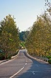Sichuan Daying County Fall country road. Eastphoto, tukuchina,  Sichuan Daying County Fall country road Stock Photography