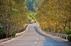 Sichuan Daying County Fall country road. Eastphoto, tukuchina,  Sichuan Daying County Fall country road Royalty Free Stock Photos