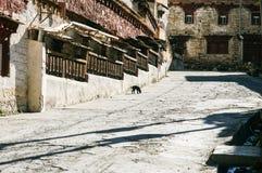 Sichuan des China-Tibetanertempels Lizenzfreie Stockfotografie