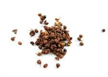 Sichuan/granos de pimienta szechuan Fotos de archivo