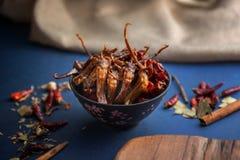 Sichuan-Küche Nahrung des Tellers chinesische stockbild