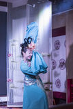 Sichuan operakapacitet Royaltyfri Fotografi