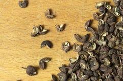 Sichuan pepper close up Stock Photos