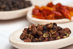 Sichuan pepper. Spices. Sichuan pepper in wooden spoon - shallow depth of field Royalty Free Stock Photography