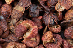 Sichuan Peppercorns Royalty Free Stock Photography