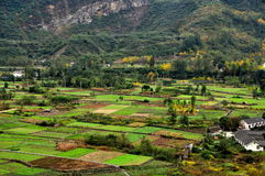 Sichuan Province, China: Patchwork Quilt of Farmlands Royalty Free Stock Image