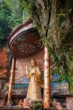 Sichuan Sinan Bambusowy Denny Sceniczny punkt Fotografia Royalty Free