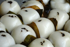 Sichuan snacks,Rake leaves Royalty Free Stock Photos