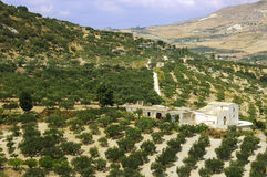 Siciliaans landbouwbedrijfhuis Royalty-vrije Stock Foto's