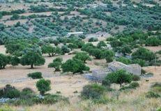 Siciliaans landelijk landschap Stock Foto
