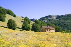 Siciliaans landschap stock afbeelding