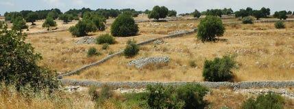 Siciliaanse landscape3 Stock Afbeeldingen