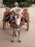Sicilian cart Stock Photo