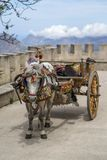 Sicilian cart Royalty Free Stock Images