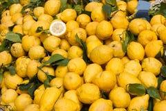 Sicilian citron Stock Image