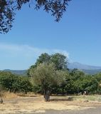 Sicilian countryside royalty free stock images