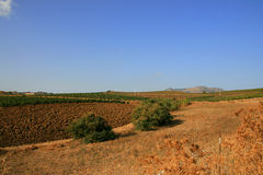 Sicilian farmland Stock Photo
