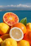 Sicilian fruits Royalty Free Stock Image
