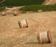 Sicilian hay bale Stock Images