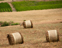 Sicilian hay bale Royalty Free Stock Photos