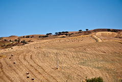Sicilian hills in Summer. Crop's hills in sicily after the harvest stock images
