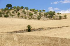 Sicilian landscape Royalty Free Stock Images