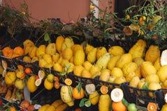 Sicilian Lemons Royalty Free Stock Images