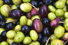 Sicilian olives background Royalty Free Stock Image