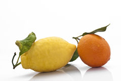 Sicilian Orange and Lemon Stock Photo
