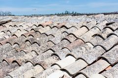 Sicilian roof, with old terracotta tiles. Royalty Free Stock Image