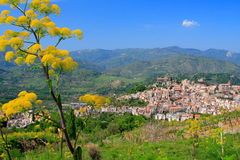 Sicilian village and flowers. Typical Sicilian village in the countryside (italy) by a sunny day with yellow flowers at first plan Royalty Free Stock Image