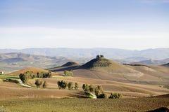 Sicilian vineyard winter landscape Royalty Free Stock Images