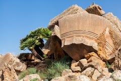 Sicily Agrigento świątyni dolina Zdjęcia Royalty Free
