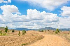 sicily för väg för panorama för land för luftblueoklarheter öppen sky Royaltyfri Fotografi