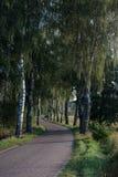 sicily för väg för panorama för land för luftblueoklarheter öppen sky Royaltyfria Foton
