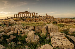 Sicily, Italy: Acropolis of Selinunte Royalty Free Stock Image
