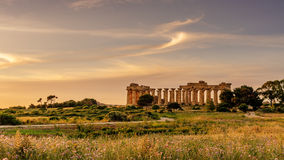 Sicily, Italy: the Temple of Hera at Selinunte Royalty Free Stock Photography