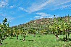 Sicily Landscape Stock Photo