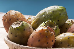 Sicily succulent prickly pear Stock Photography